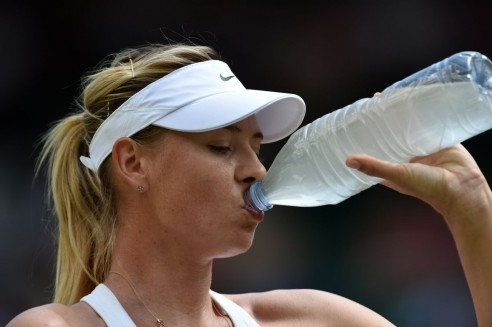 Maria Sharapova Ousted By Angelique Kerber At Wimbledon Tennis