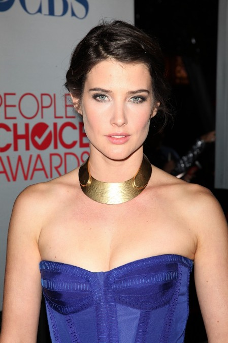 Cobie Smulders Haircuts