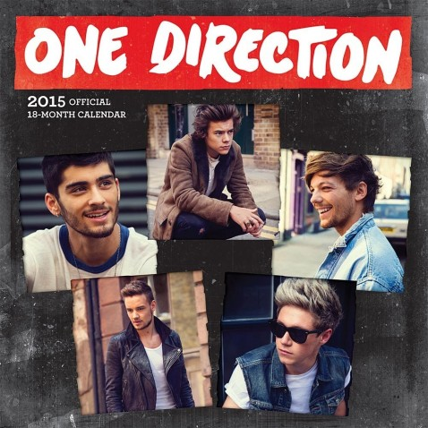 One Direction Shared Picture America