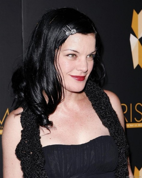 Pauley Perrette Picture