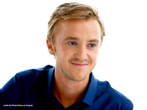 Tom Felton Wallpaper Tom Felton Wallpaper