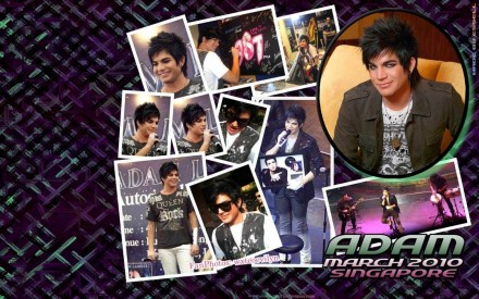Adam Hot Wallpapers Adam Lambert Hot