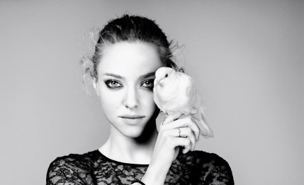 Amanda Seyfried Wallpaper Hd