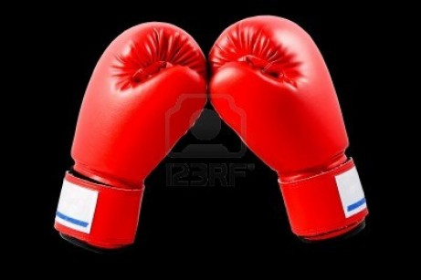 Boxing Gloves With White Blackground Gloves