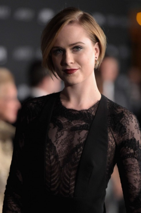 Evan Rachel Wood Lacma Art And Film Gala