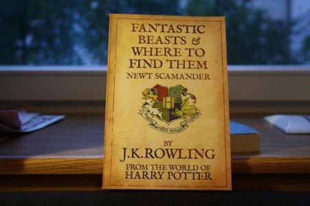 Fantastic Beasts And Where To Find Them Shared Picture Spain