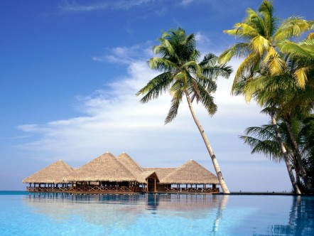 Live The Adventure In Maldives Img
