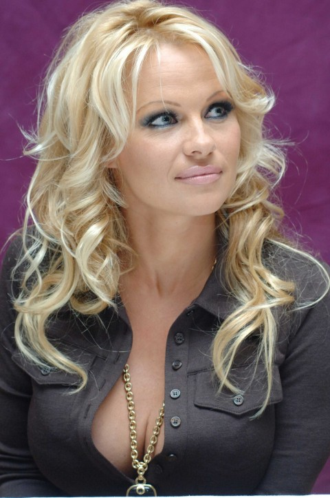 Pamela Anderson Hq Pictures Set