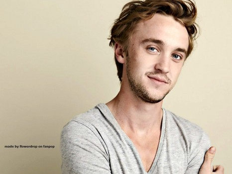 Tom Felton Wallpaper Tom Felton