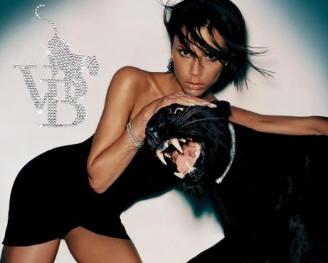 Victoria Beckham With Black Panther Wallpaper Normal Wallpaper