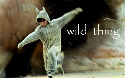 Max Where The Wild Things Are Max And
